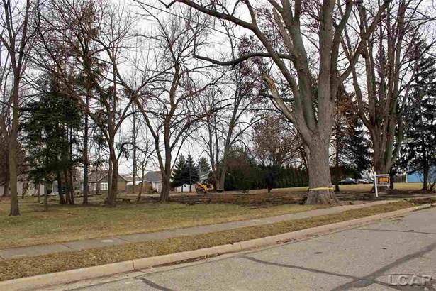 223 Railroad Street, Blissfield, MI - USA (photo 5)