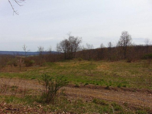 Lot 1a Burnt House Rd, Imler, PA - USA (photo 1)