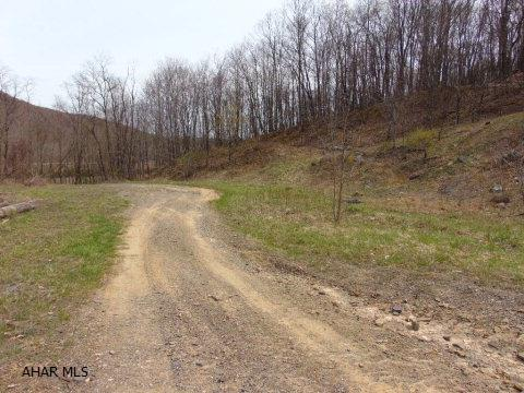 Lot 1a Burnt House Rd, Imler, PA - USA (photo 2)
