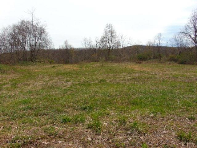 Lot 1a Burnt House Rd, Imler, PA - USA (photo 3)