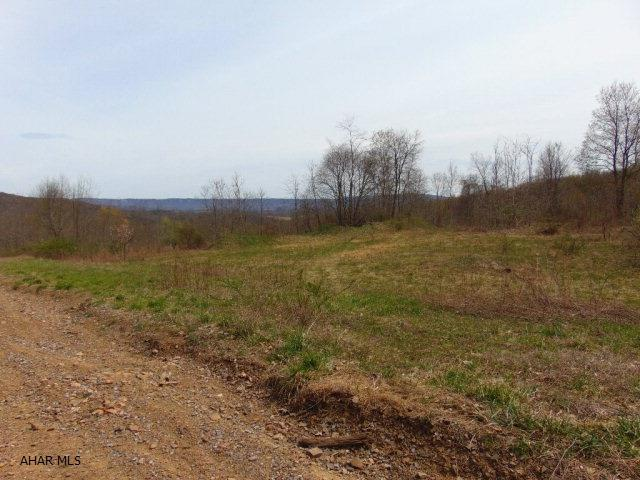 Lot 1a Burnt House Rd, Imler, PA - USA (photo 4)