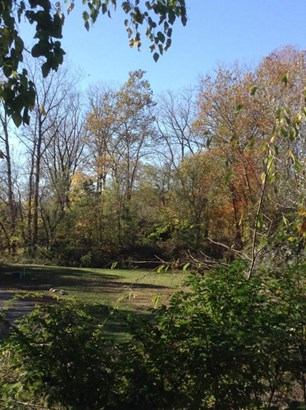 0 Chester Estates Drive Lot #125, Chesterville, OH - USA (photo 4)