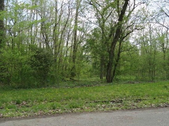 0 Chester Estates Drive Lot #131, Chesterville, OH - USA (photo 1)