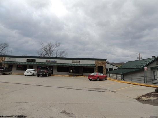 15021 N Preston Highway, Bruceton Mills, WV - USA (photo 2)