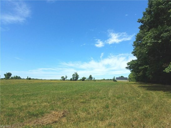 6095 N River Rd. - State Rd 307 Rd, Geneva, OH - USA (photo 4)