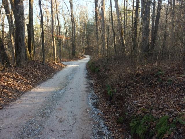 415 Shot Gun Lane, Dover, PA - USA (photo 2)