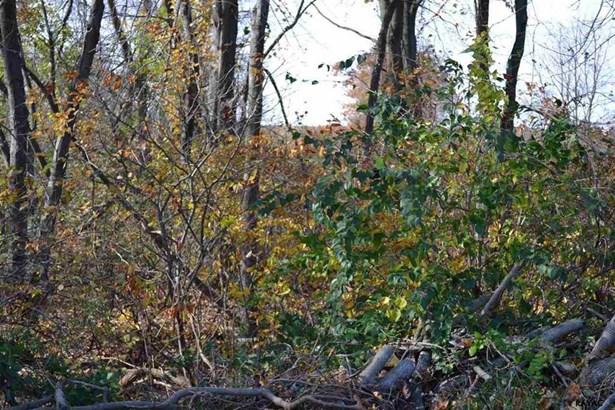 Vacant Land Main & Hunt Club Rd, Fawn Grove, PA - USA (photo 2)