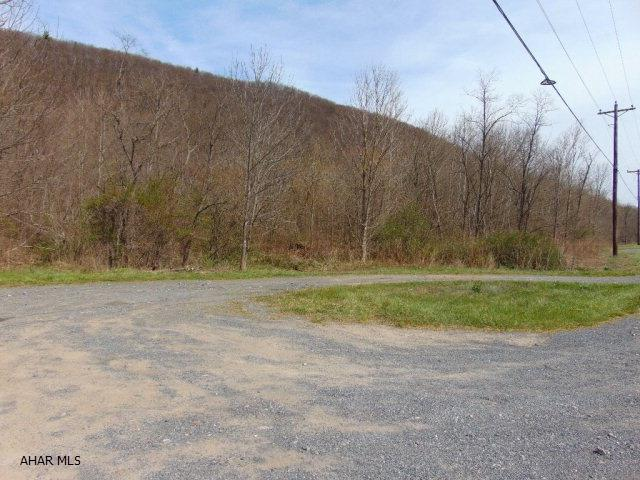 Lot 1b Burnt House Rd, Imler, PA - USA (photo 3)