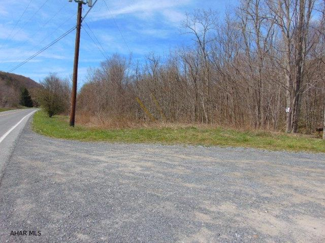 Lot 1b Burnt House Rd, Imler, PA - USA (photo 4)