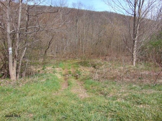 Lot 1b Burnt House Rd, Imler, PA - USA (photo 5)