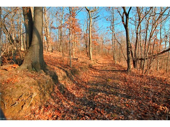 516 Baum Se St, Canton, OH - USA (photo 1)