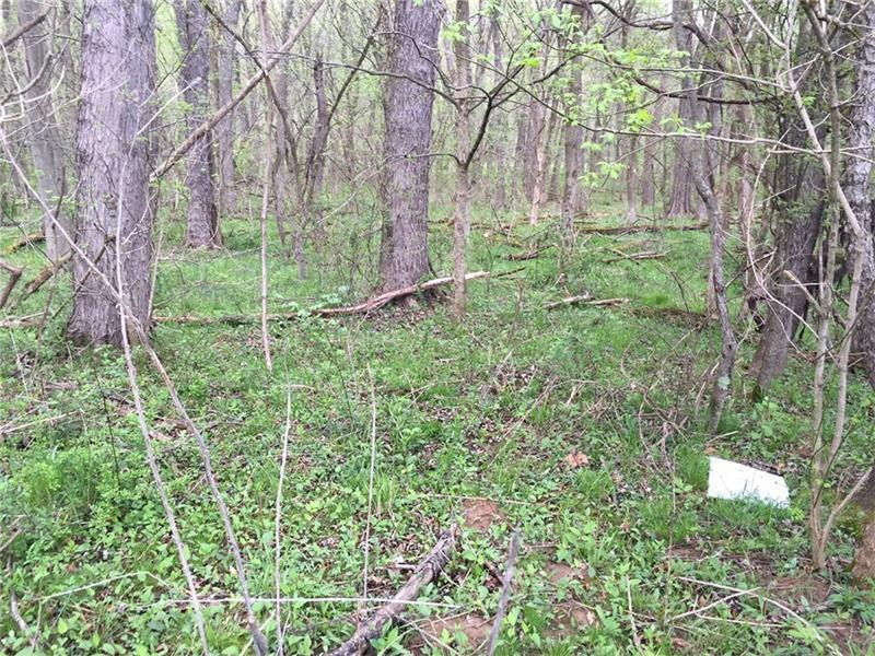 Lot #4&p3 Arensburg Road Ext, E Millsboro, PA - USA (photo 5)