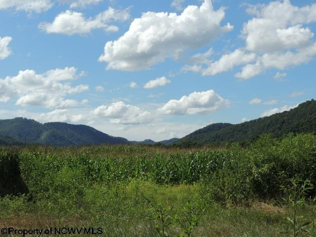 629 Butts Farm Road, Parsons, WV - USA (photo 3)