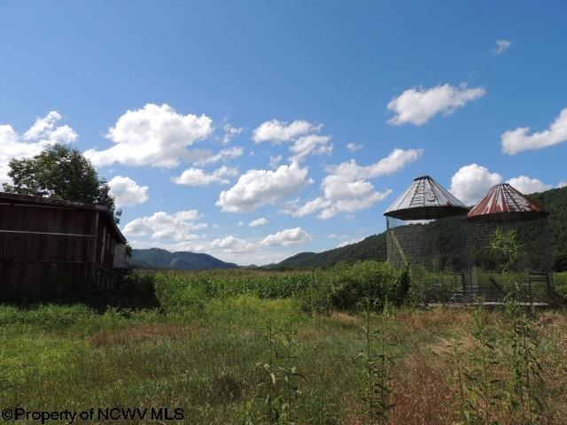 629 Butts Farm Road, Parsons, WV - USA (photo 4)