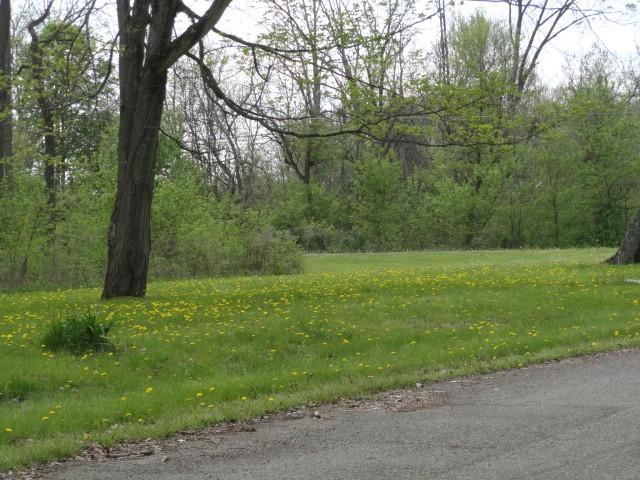0 Chester Estates Drive Lot #130, Chesterville, OH - USA (photo 3)