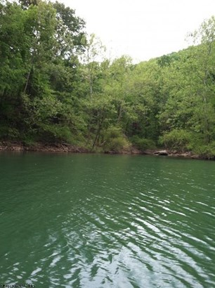 Lot 6 Cove Run Club Road, Moatsville, WV - USA (photo 2)