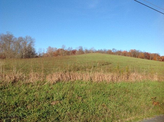 189 Hillegass  Road Lot 1 B, Schellsburg, PA - USA (photo 2)