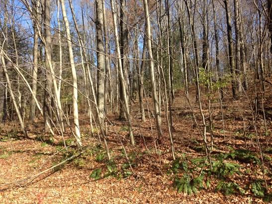 Lot #39 Woodlands Rd, Amenia, NY - USA (photo 1)
