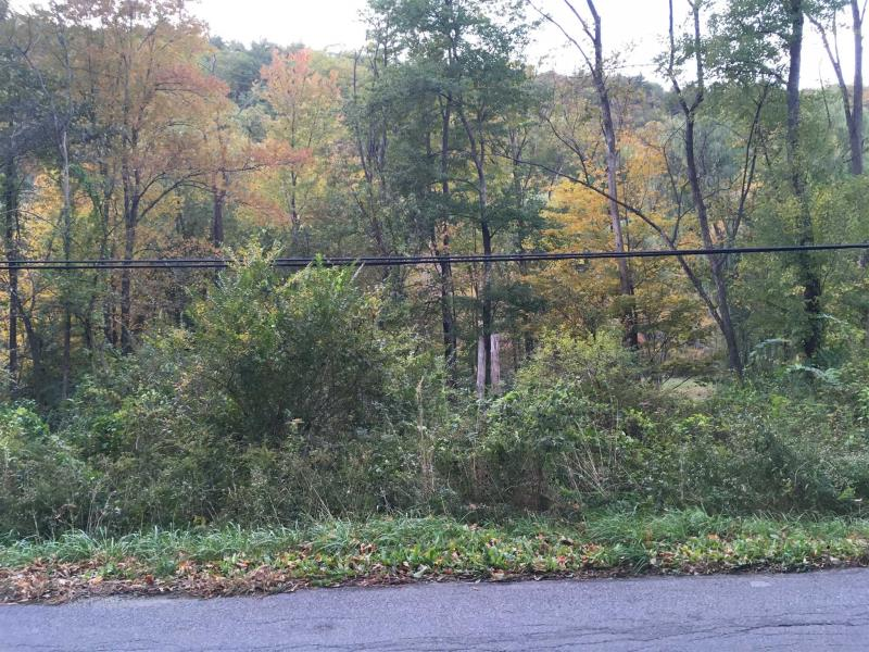Old Pawling Road, Dover, NY - USA (photo 2)