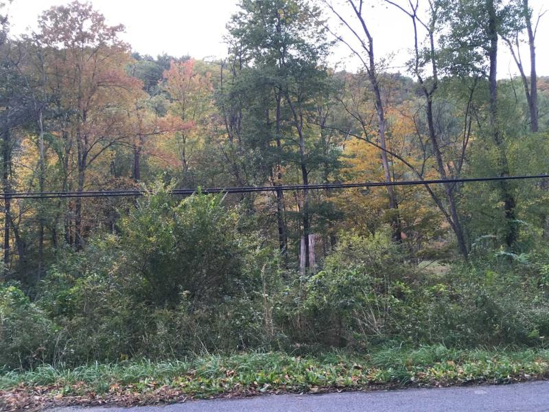 Old Pawling Road, Dover, NY - USA (photo 3)