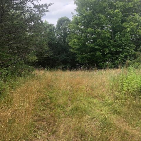 Route 82, Millbrook, NY - USA (photo 3)