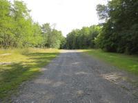 E Fallkill Road Lot, Clinton, NY - USA (photo 2)