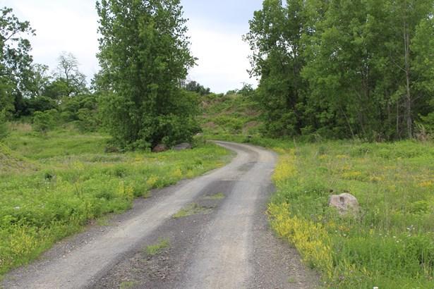 County Route 19, Livingston, NY - USA (photo 3)