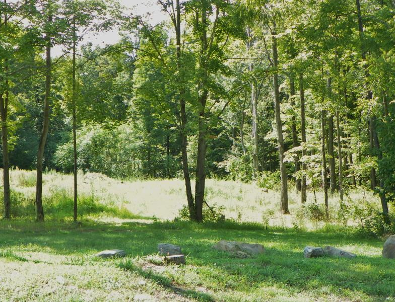Lot 1 Pond View Ct, Hyde Park, NY - USA (photo 3)