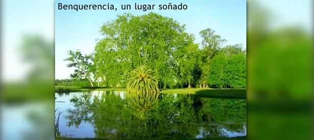 Benquerencia, Monte - ARG (photo 4)