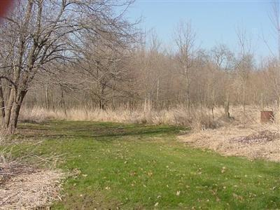 Vacant Land/Acreage - Brook, IN (photo 3)
