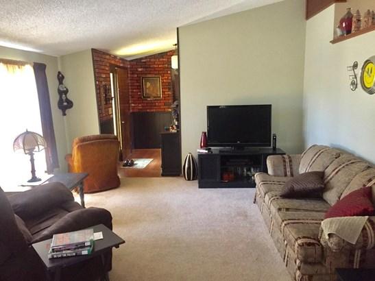 Quad Level, Single Family Detach - Lowell, IN (photo 4)