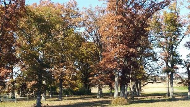 Ranch/1 Sty/Bungalow, Single Family Detach - Lowell, IN (photo 4)