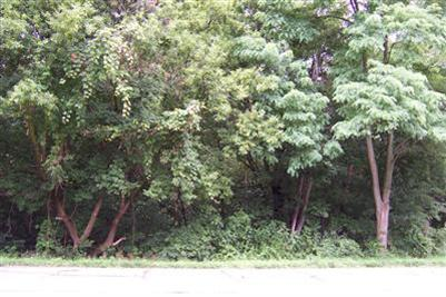 Vacant Land/Acreage - Valparaiso, IN (photo 4)