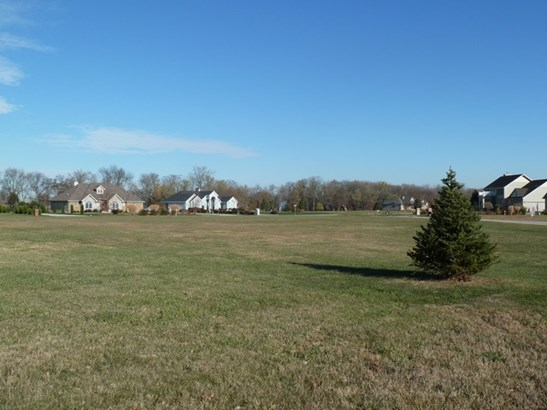 Land - ST. ANNE, IL (photo 1)