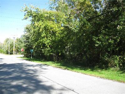 Vacant Land/Acreage - Highland, IN (photo 5)