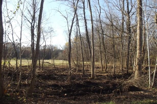 Vacant Land/Acreage - Westville, IN (photo 4)