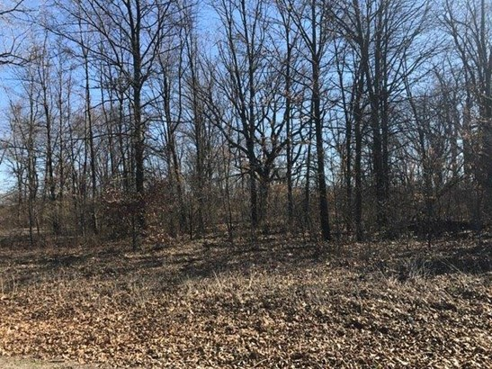 Vacant Land/Acreage - Knox, IN (photo 5)