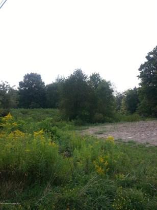 Lots and Land - Scott Twp, PA (photo 4)