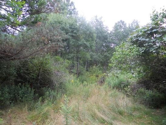 Lots and Land - Glenburn Twp, PA (photo 1)