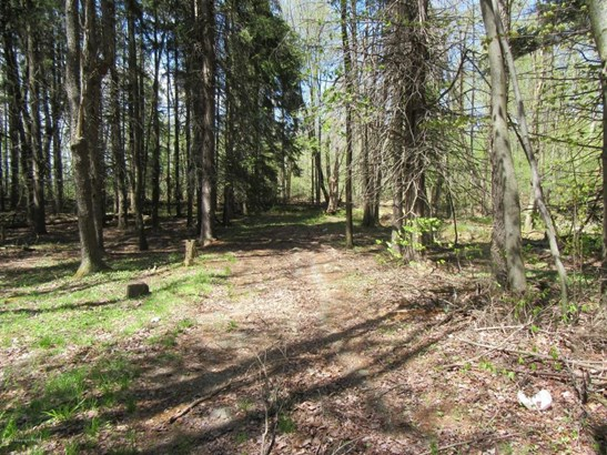 Approved Lot - Clifton Township, PA (photo 4)