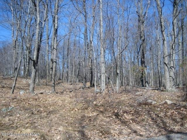 Approved Lot - Sterling, PA (photo 1)