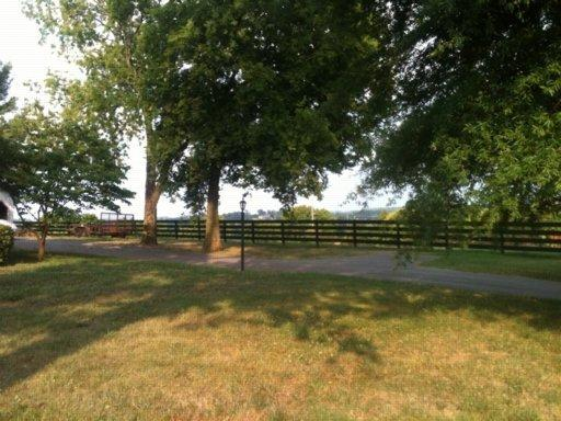 Ranch,Residential, Cape Cod,Traditional - Knoxville, TN (photo 2)