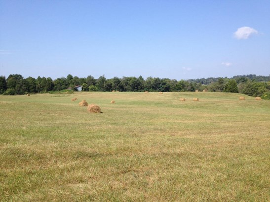 Farm,Recreational,Single Family - Lenoir City, TN (photo 2)