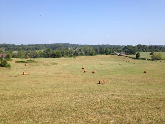 Farm,Recreational,Single Family - Lenoir City, TN (photo 3)