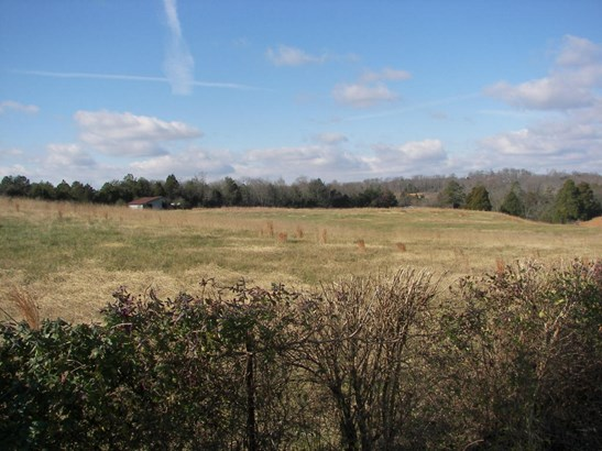 Farm,Recreational,Single Family - Lenoir City, TN (photo 4)