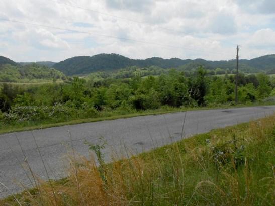 Single Family - Maynardville, TN (photo 1)