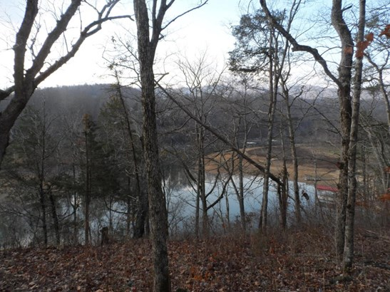 Lake Front,Recreational,Rural,Waterfront Access - Jacksboro, TN (photo 3)