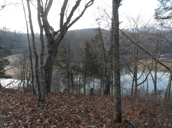 Lake Front,Recreational,Rural,Waterfront Access - Jacksboro, TN (photo 5)