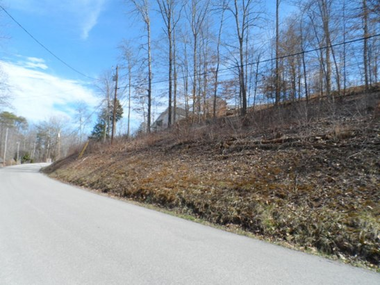 Recreational,Rural,Single Family - Jacksboro, TN (photo 3)