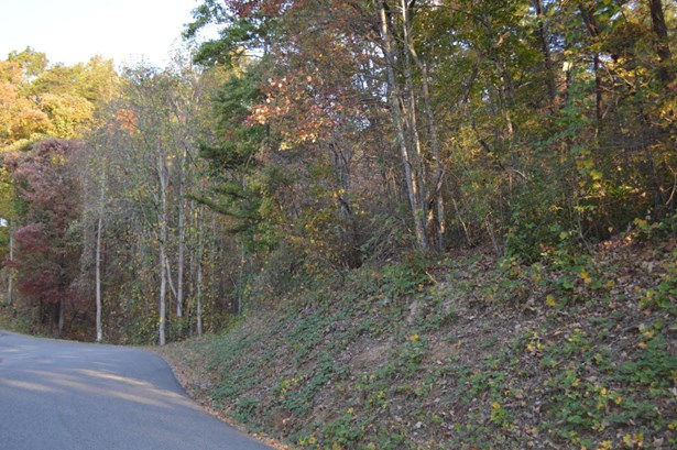 Single Family - Caryville, TN (photo 3)